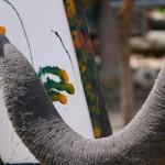 И животните са способни на изкуство